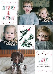 Tis the Season to Be Holly Multi-Photo Card
