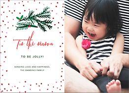 Tis the Season to Be Holly Photo Card