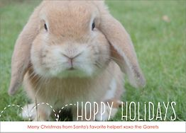 Hoppy Holidays Holiday Photo Card