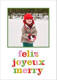 Feliz Merry Joyeux Photo Card