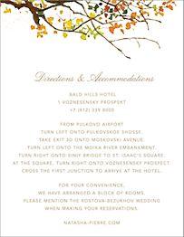 Autumn Boughs Information Card