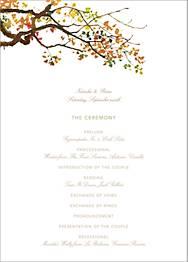 Autumn Boughs Program