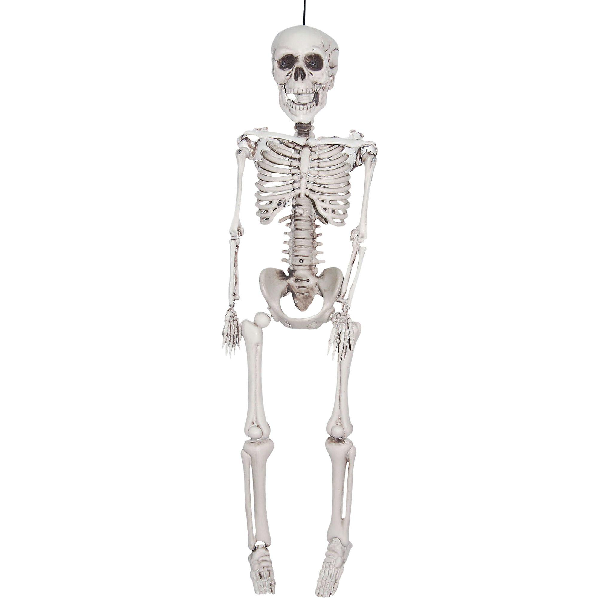 Realistic Hanging Skeleton 35 Inches Plastic Prop Bones