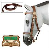 Down Under Kimberly Australian Halter Bridle