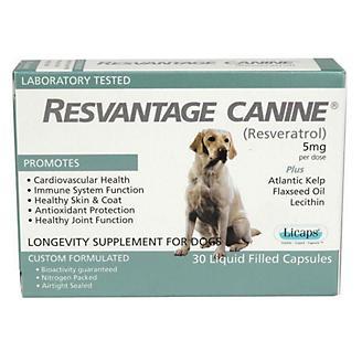Resvantage Overall Canine Health