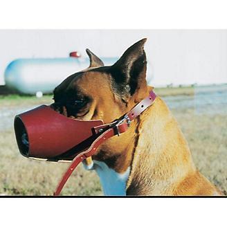Canine Leather Muzzle