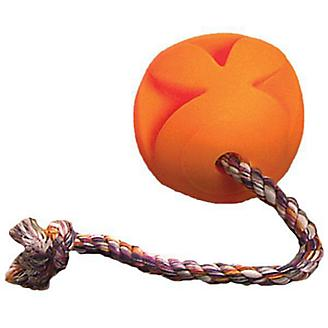 Toss N Clutch with Rope Ball Dog Toy