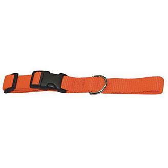 Adjustafit Dog Collar Orange