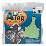 Atag Cow 1Pc Tags Blank 25Ct-Green