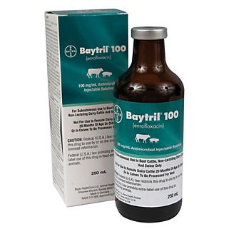 Baytril 100 Injection