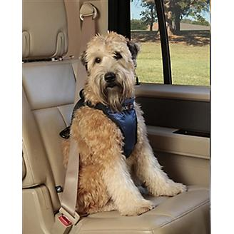 Deluxe Car Safety Harness