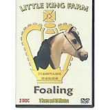Smoke In Motion Little King Farm Foaling DVD