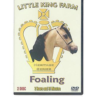 Smoke In Motion Little King Farm Foaling DVD