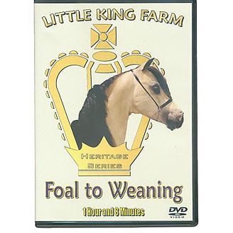 Smoke In Motion Little King Farm Foal to Wean DVD