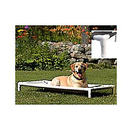 Pipe Dreams Outdoor Elevated Pet Bed 1800petsupplies Com