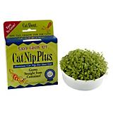 Miracle Care CatNip Plus