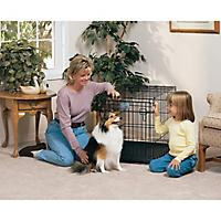 Image of MidWest Life-Stages Folding Dog Crate 48 x 30 x 33
