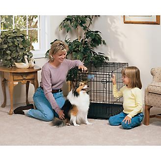 MidWest Life-Stages Folding Dog Crate