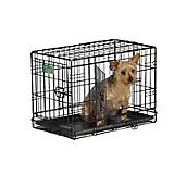 MidWest iCrate Dbl Door Folding Dog Crate