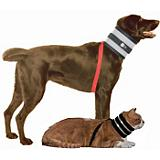 BiteNot Pet Collar