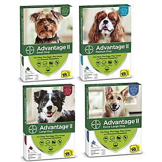 Advantage II for Dogs 12-Month Supply