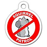 Squirrel Patrol Pet ID Tag