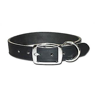 Premium Latigo Leather Dog Collar