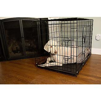 Iconic Pet Double Door Wire Dog Crate