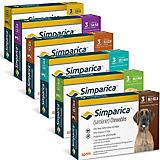 Simparica Flea and Tick for Dogs