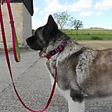 Hurtta Explorer Dog Leash 6ft