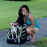 I-GO2 Traveler Pet Carrier