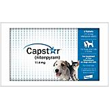 Capstar for Dogs 6 Pack