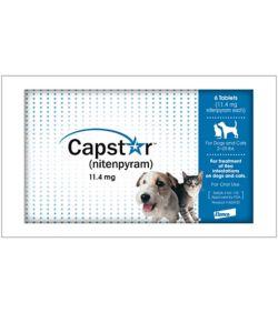 Capstar For Dogs 6 Pack Kvsupplycom