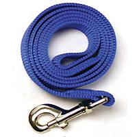Image of Nylon Dog Leash 6ft x 5/8in Blue