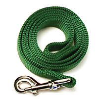 Image of Nylon Dog Leash 6ft x 5/8in Green