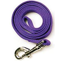Image of Nylon Dog Leash 6ft x 5/8in Purple