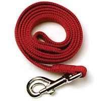 Image of Nylon Dog Leash 6ft x 5/8in Red