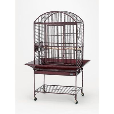 Avian Adventures Chiquita Dometop Bird Cage Plat