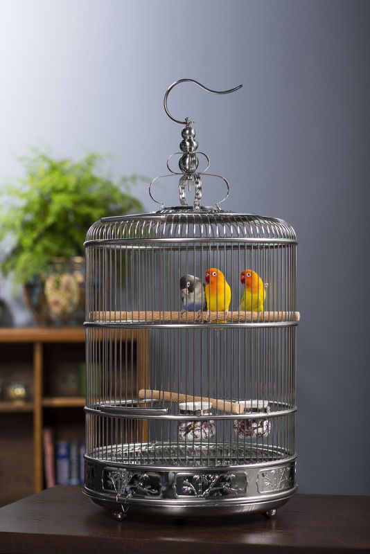 Prevue Empress Stainless Steel Bird Cage