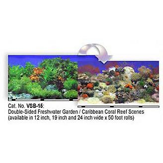 Blue Ribbon Reef Aquarium Background