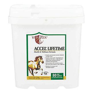Vita Flex Accel Lifetime