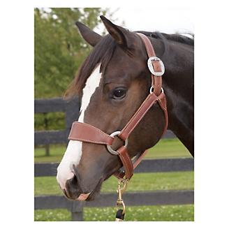 Weaver Leather Headstalls & Halters - Statelinetack com