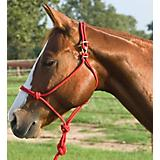 Mustang Easy-On Rope Halter
