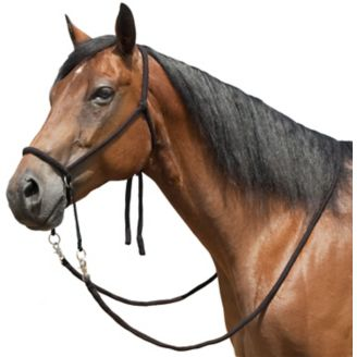 Mustang Nylon Bitless Bridle w/Reins Brown - Horse com