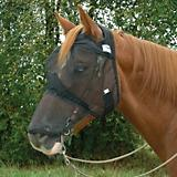 Cashel Quiet Ride Extended Nose Fly Mask