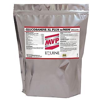 Med-Vet Glucosamine XL Plus MSM