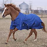 Tough-1 Wild 600D Turnout Blanket 250g