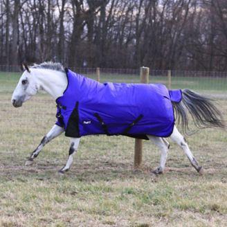 """Tough 1 foal turnout blanket /""""Green/"""""""
