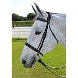 HDR Pro Mono Crown Fancy Bridle