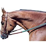 Tory Leather Padded Flat Bridle
